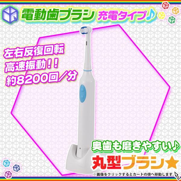 電動歯ブラシ 電動 歯磨き 丸型ブラシ 口臭予防 オーラルケア 電池式 電動 歯ブラシ 歯磨き 歯みがき - エイムキューブ画像1